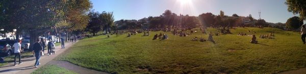sunny-dolores-1