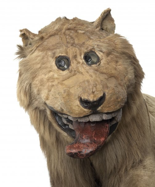 gripsholm lion